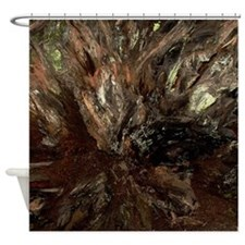 Redwood Tree Root Shower Curtain