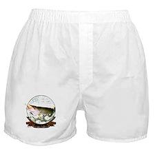 Musky 0 Boxer Shorts