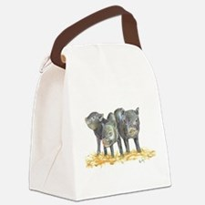 Pot bellied pigs three Canvas Lunch Bag