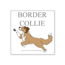 Sable Border Collie Sticker