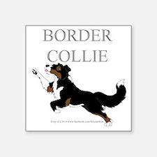 Tri Border Collie Sticker