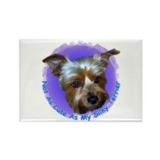 Silky Terrier Rectangle Magnet (100 pack)