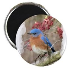 Cute Bluebird Magnet
