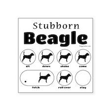 """Stubborn Beagle v2 Square Sticker 3"""" x 3"""""""
