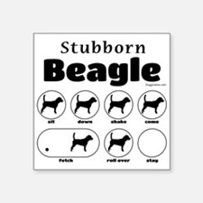 "Stubborn Beagle v2 Square Sticker 3"" x 3"""