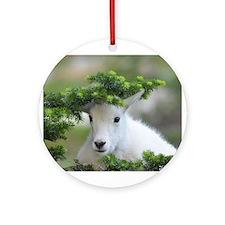 Kute Kid Mountain Goat Ornament (Round)