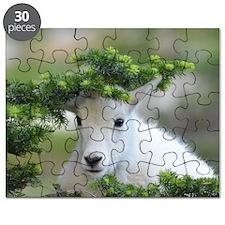 Kute Kid Mountain Goat Puzzle