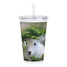 Kute Kid Mountain Goat Acrylic Double-wall Tumbler
