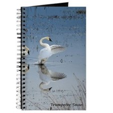 Dance of the Trumpeter Swans Journal