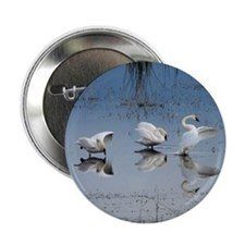 """Dance of the Trumpeter Swans 2.25"""" Button (10 pack"""
