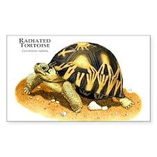 Radiated Tortoise Rectangle Decal