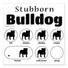 """Stubborn Bulldog v2 Square Car Magnet 3"""" x 3"""""""
