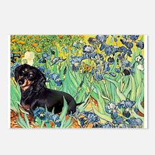 Irises & Dachshund (BT4) Postcards (Package of 8)