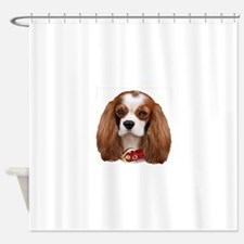 Cavalier King Charles Portrait Shower Curtain