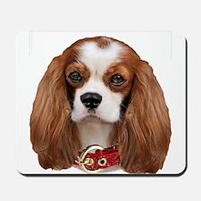 Cavalier King Charles Portrait Mousepad