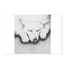 Sleeping Lily Postcards (Package of 8)