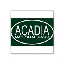"Cute Acadia national park Square Sticker 3"" x 3"""
