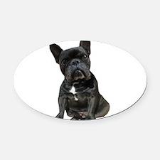 French Bulldog Puppy Portrait Oval Car Magnet