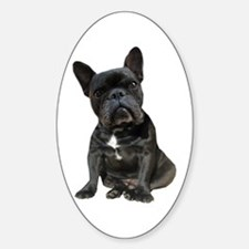French Bulldog Puppy Portrait Decal