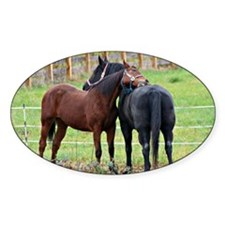 Snuggling Morgan Horses Decal