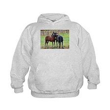Snuggling Morgan Horses Hoodie