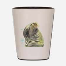 Galapagos Sea Lion Shot Glass