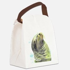 Galapagos Sea Lion Canvas Lunch Bag