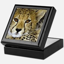 00-pil-03cheetah.jpg Keepsake Box
