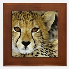 00-pil-03cheetah.jpg Framed Tile