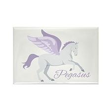 Pegasus Magnets