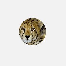 Cheetah Portrait Mini Button