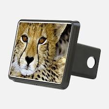 Cheetah Portrait Hitch Cover