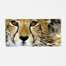 Cheetah Portrait Aluminum License Plate