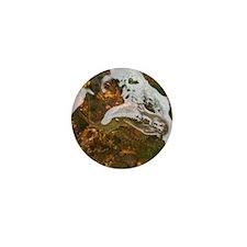 Taneycomo Sculpin in thin water Mini Button