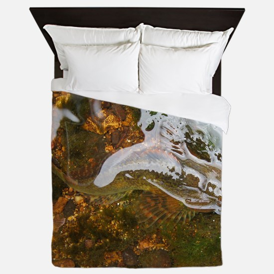 Taneycomo Sculpin in thin water Queen Duvet