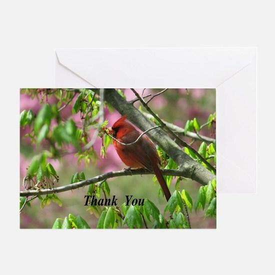 Blossoming Cardinal Greeting Cards