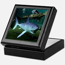 Shark Week Keepsake Box