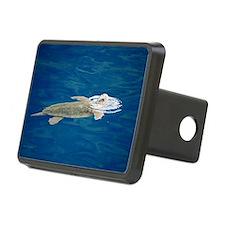 Loggerhead Sea Turtle Hitch Cover