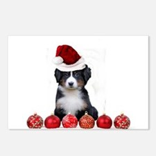 Christmas Bernese Mountain Dog Postcards (Package