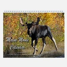 Maine moose 3 Wall Calendar