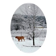 Dogue In Snow Ornament (oval)