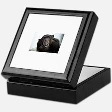 smoking monkey Keepsake Box