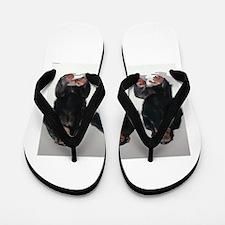 monkeys Flip Flops