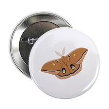 "Polyphemus Silk Moth 2.25"" Button (10 pack)"