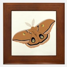 Polyphemus Silk Moth Framed Tile