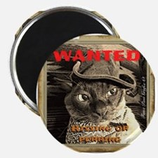Wanted, Hissing or Purring Magnets