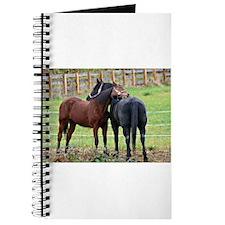 Snuggling Morgan Horses Journal
