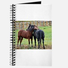 Snuggling Morgan Horses Journal