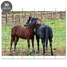 Snuggling Morgan Horses Puzzle