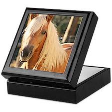 Haflinger Horse Keepsake Box